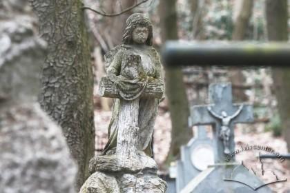 Знесінський цвинтар при вулиці Заклинських