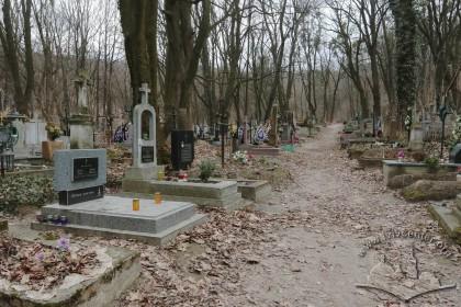 Знесінський цвинтар при вулиці Заклинських. Центральна алея