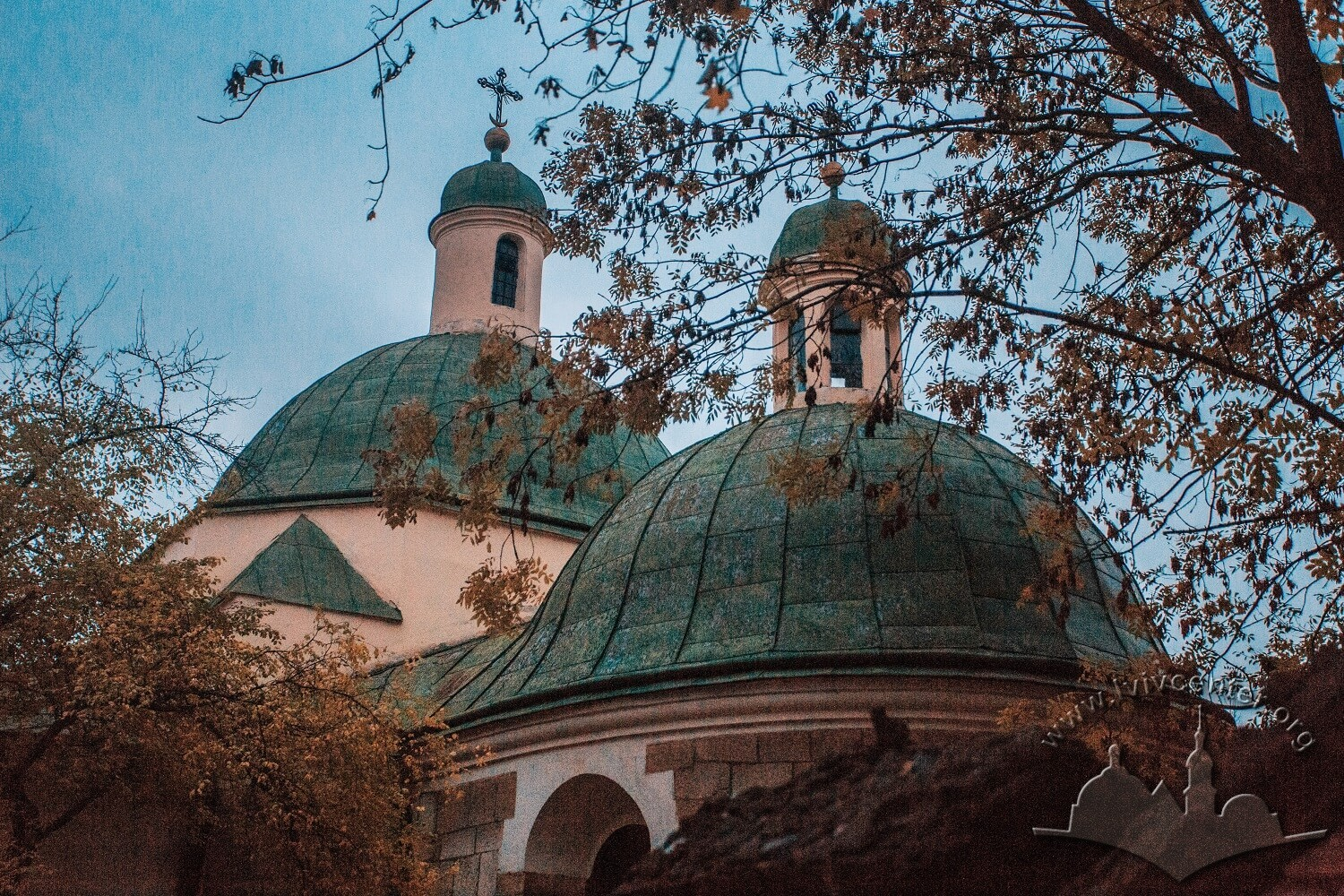 Vul. Khmelnytskoho, 28. Domes/Photo courtesy of Nazarii Parkhomyk, 2015