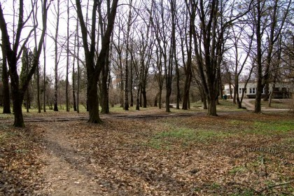 """Vul. Stryiska. Southern part of the Stryiskyi park. Formerly the ukrainian sport association """"Sokil-Father"""" had its stadium situated around here."""
