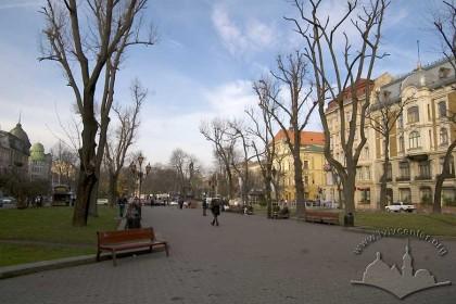 Алеї проспекту Свободи, у перспективі – пам'ятник Тарасові Шевченку.