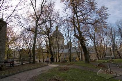 Алеї вул. Підвальної – Винниченка. За деревами видно обриси історичної забудови середмістя.