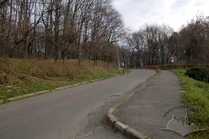 """Парк """"Знесіння"""" та його головна алея."""