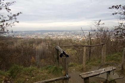 """Парк """"Знесіння"""", оглядовий майданчик і панорама північного району Львова."""