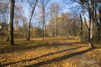 Zalizna Voda Park, main path