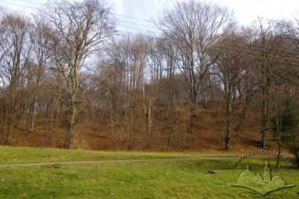 Pohulianka Park's eastern edge in autumn
