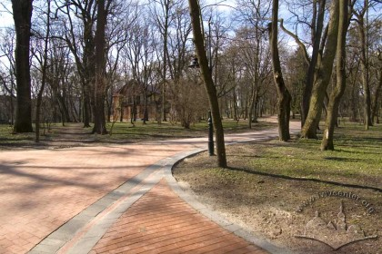 Winding lane in the central section of the park.