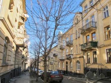 Будинок № 25 на вул. Тарнавського у рядовій забудові вулиці. Вигляд в бік вулиці Зеленої