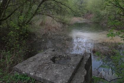 Озерце у місці масових розстрілів євреїв