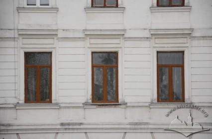 Вул. Стефаника, 11. Вікна 2-го поверху на тильному фасаді