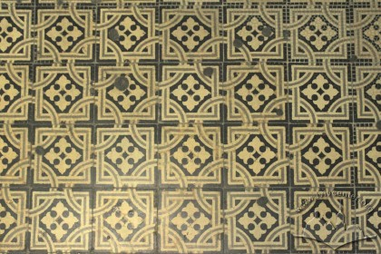 Vul. Halytska, 21. Tiles of the staircase's floor