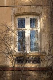 Вул. Кольберга, 6. Вікно 1-го поверху з автентичною столяркою